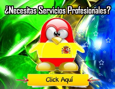 banner-servicios-brasil